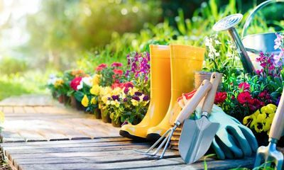 Common Gardening Mistakes