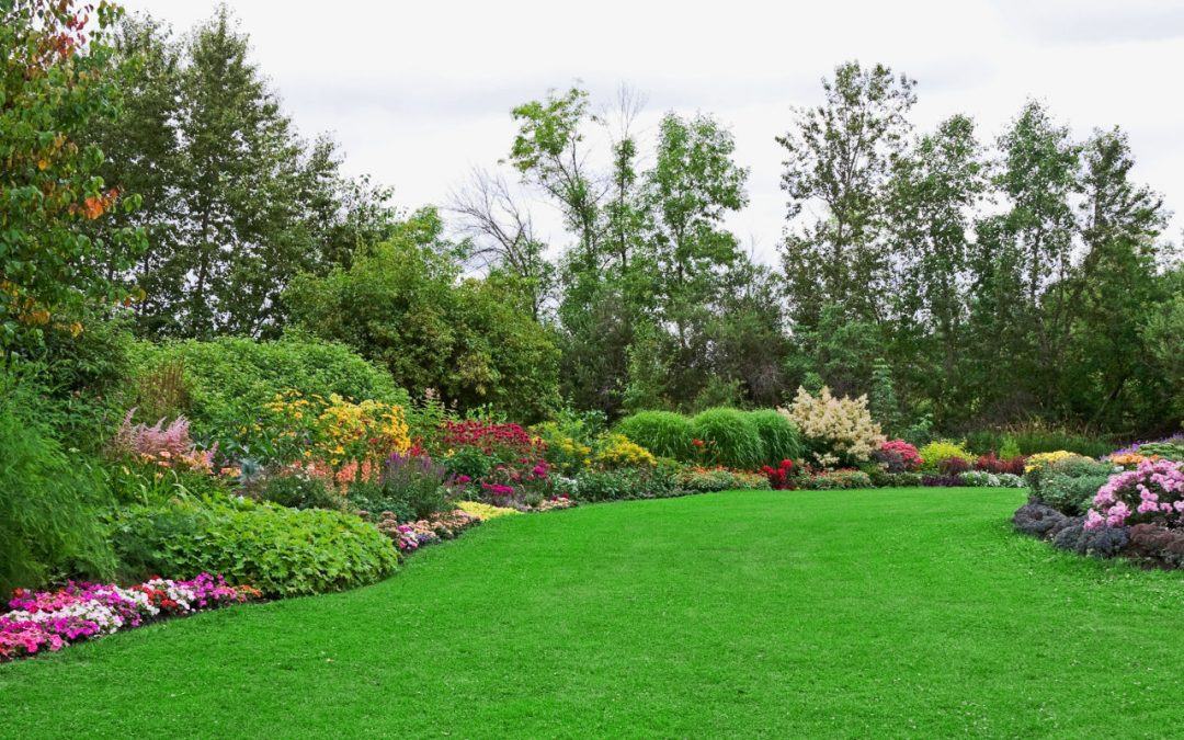 Easy ways to keep your gardens healthy